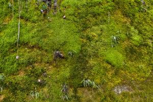 Wolfsschlucht in Kriens in einer Luftaufnahme
